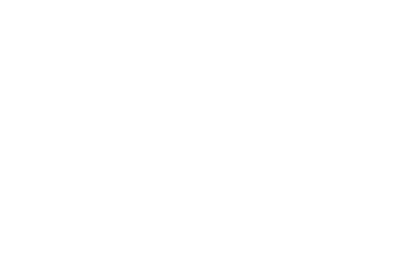 Bird Logo graphic
